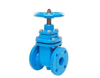 Pratt Gate Valves